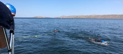 Competitors swimming in Lake Argyle during the race