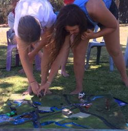Two Scouts putting pollutants in the Swan River Catchment model