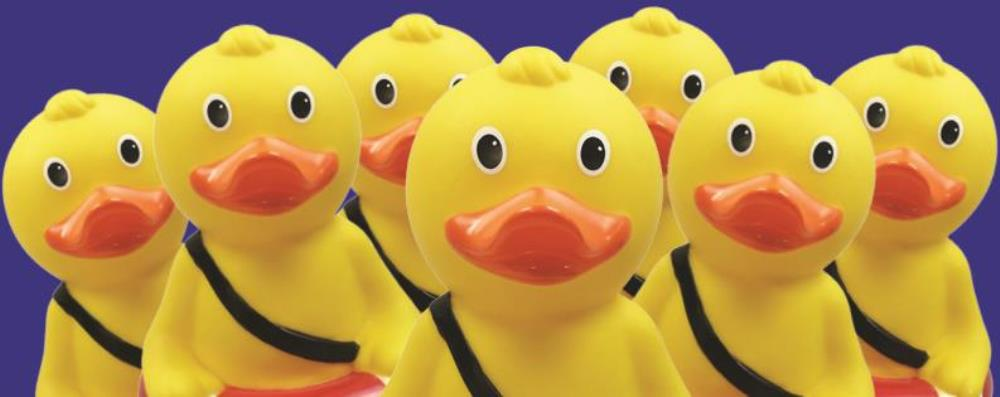A group of Quackers fundraising ducks ready to collect donations for Royal Life Saving Day 2015