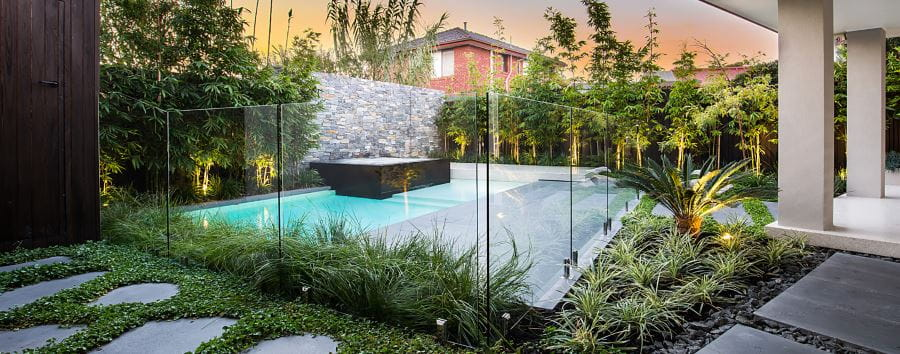 A modern home pool with plants surrounding it
