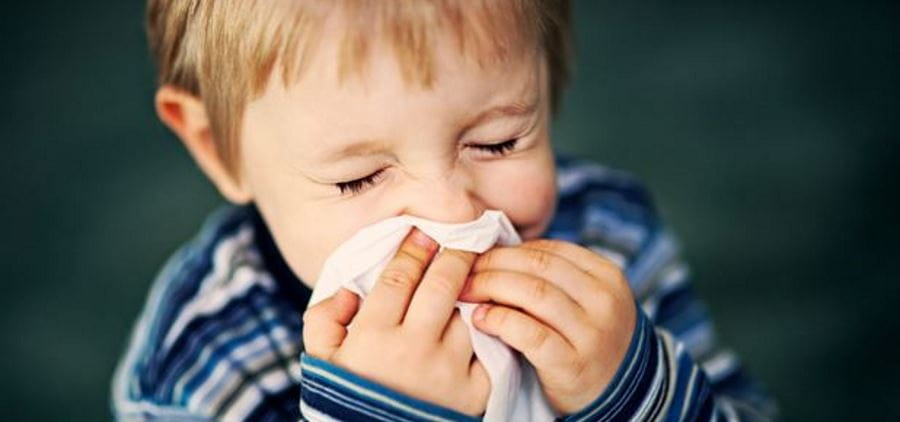 A small boy in a striped blue top holding a tissue to his nose and sneezing